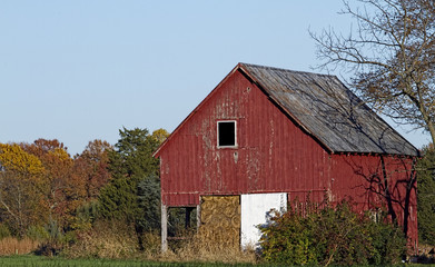 Old weathered and worn farm outbuilding in the country during the fall season with colorful foliage in background.