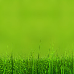 Conceptual green 3d grass field or lawn on green background