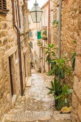 Plants and flowers in narrow street in the Old Town in Dubrovnik, Croatia, mediterranean ambient