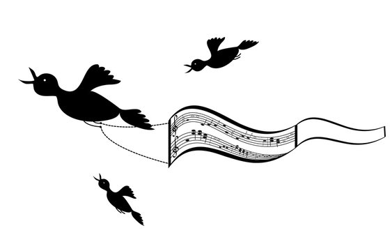 Flying birds with sheet music background. Vector illustration of musical culture billboard with a frame for your text