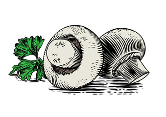 Two champignons with parsley