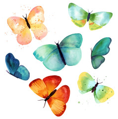 Various watercolor butterflies on white background