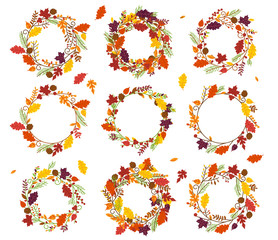 Vector Collection of Thanksgiving, Autumn or Fall Themed Wreaths and Frames
