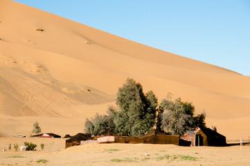 Berber Tents in Merzouga Dunes - Morocco