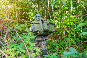 soldier or chasseur walking through a forest with lush grass