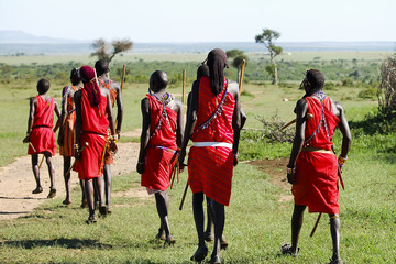 Traditional Dance of Masais - Kenya Wall mural