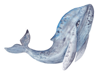 Watercolor Whale Painting