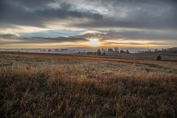 foggy morning on meadow
