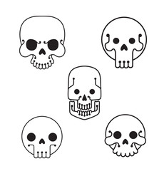 Vector Line skulls set. Line image of five human skulls of various shapes and sizes on a white background.