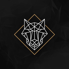 The wolf head logo (Icon) - Vector illustration. The wolf head in outline low poly style on the dark abstract geometric background.