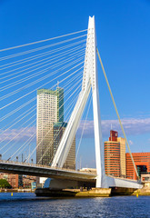 Wall Murals Rotterdam View of Erasmus Bridge in Rotterdam, Netherlands