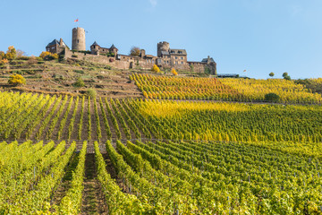 Mosel - Burg Thurant mit Weinberg