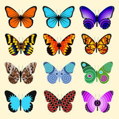 Set Of Butterflies, isolated vector illustration