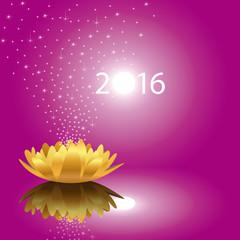 2016_Fleur-Etoiles