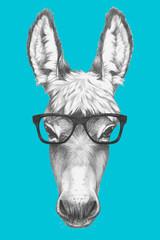 Portrait of Donkey with glasses. Hand drawn illustration.