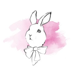 Rabbit pencil sketch 2