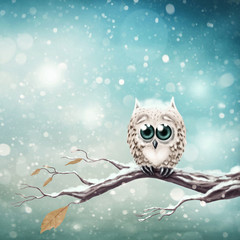 Little snow owl