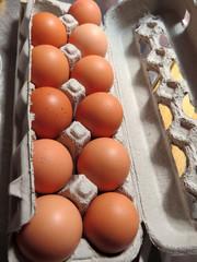 Brown eggs in a cardboard carton