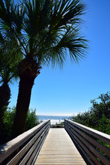 Hilton Head Beach Boardwalk