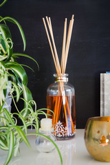 Aroma reed diffuser, candle and spider plant against blackboard wall. Selective focus on bottle and sticks.