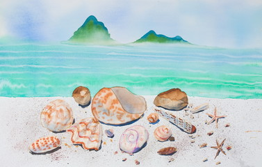 Many shells and blue sea, watercolor painting