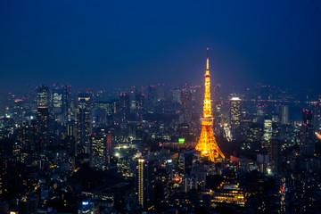Tokyo night cityscape