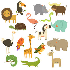 Cute Woodland and Jungle Animals Vector Set