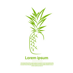 Green Pineapple Logo Draw Outline Icon Vector