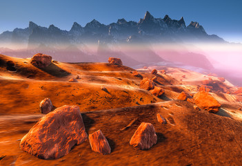 Mars - dry dunes, rocks of the red martian landscape