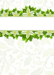Christmas background with white poinsettia and holly leaves decoration elements. Vertical banner with  horizontal borders and copy space for your text