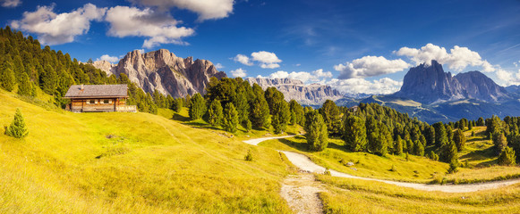 Wall Mural - magical mountain landscape