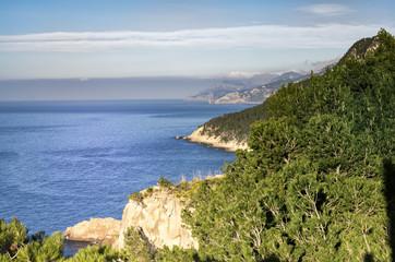 wonderful island 2