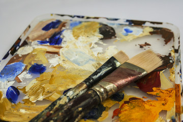 Two paint brushes on paint palette.