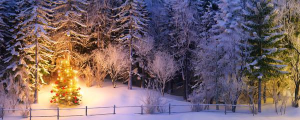christmas tree in snowy forest - weihnachtsbaum in verschneitem