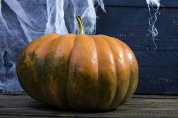 Still life one big pumpkin