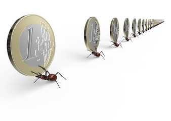 ant is lifting a euro coin isolated on a white