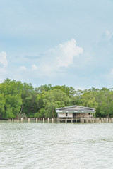 House riverside in mangrove forest with blue sky and cloud