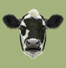 Illustraited Portrait of Cow