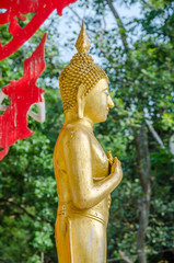 Old golden standing buddha in public in Thai Temple; Buddha of F
