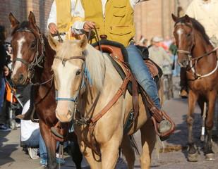 cowboys riding horses