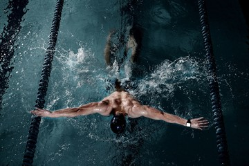 Sportsman swims in a swimming pool