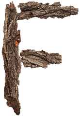 Alphabet from bark tree isolated on white background. Letter F