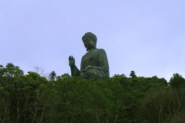 big Buddha in the jungle