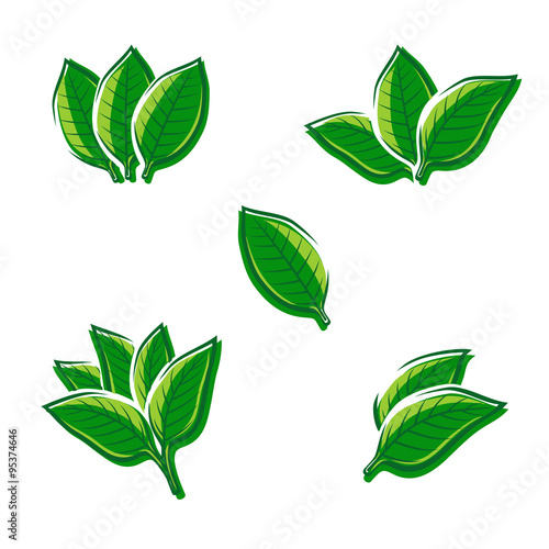 tobacco leaf Tobacco leaf, wholesale various high quality tobacco leaf products from global tobacco leaf suppliers and tobacco leaf factory,importer,exporter at alibabacom.