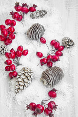 Christmas Decoration with Red Berries and Pine Cones