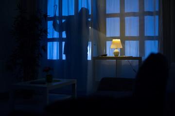 shadow  of burglar - fototapety na wymiar