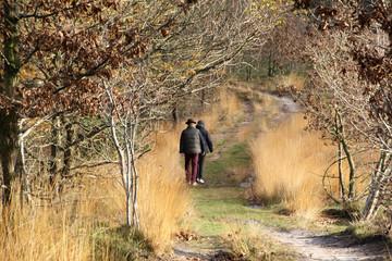 senior couple walking in autumn park