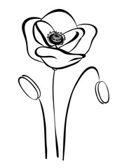 simple silhouette black and white poppy. Abstract flower pattern