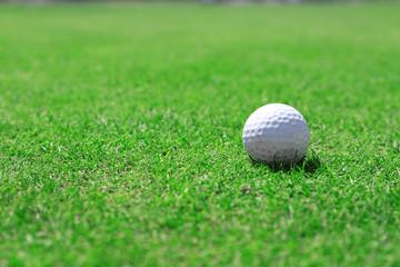 Golf ball on green golf course