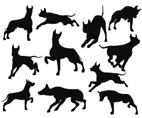 dog pose set move puppy bark silhouette